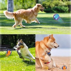Pet Dog Puppy Squeaky Chew Toy Sound Pure Natural Non-toxic Rubber Outdoor Play Small Big Dog Funny Ball  - 10
