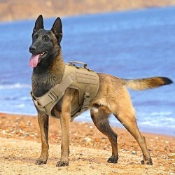 Tactical Dog Harness Pet Military Training Dog Vest German Shepherd Dog Harness  - 7