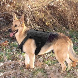 Tactical Dog Harness Pet Military Training Dog Vest German Shepherd Dog Harness  - 8