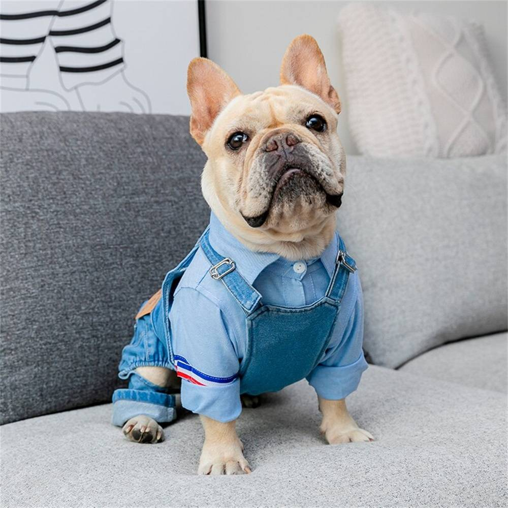 Dog Clothes Pet Jeans Clothes,Dogs Cotton Stretch Jeans Tow-Legged Jacket Adjustable French Bulldog Clothing