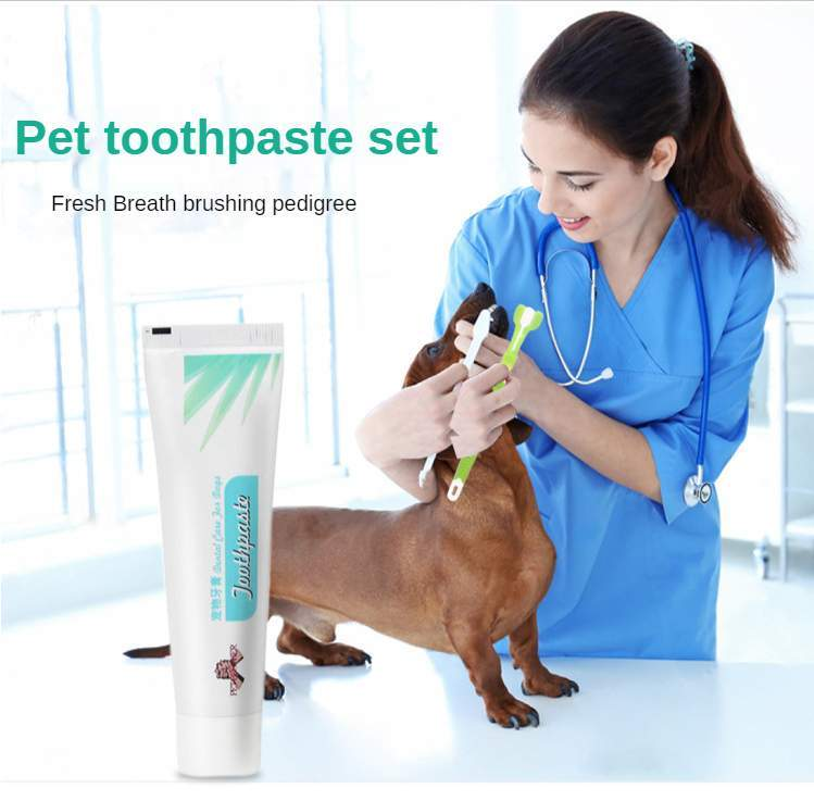 Dog Toothbrush Pet Toothpaste Dental Silicone Teeth Accessories Supplies For Stone Clean Care Washing Dogs Cats