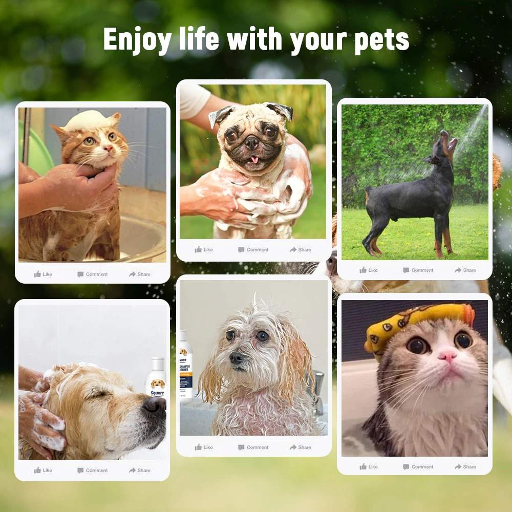 Pet Shampoo and Conditioner 2in1 Pet Shower Gel for Puppy Dog Cat  Shower Soap Soft Dog Shampoo Body Wash