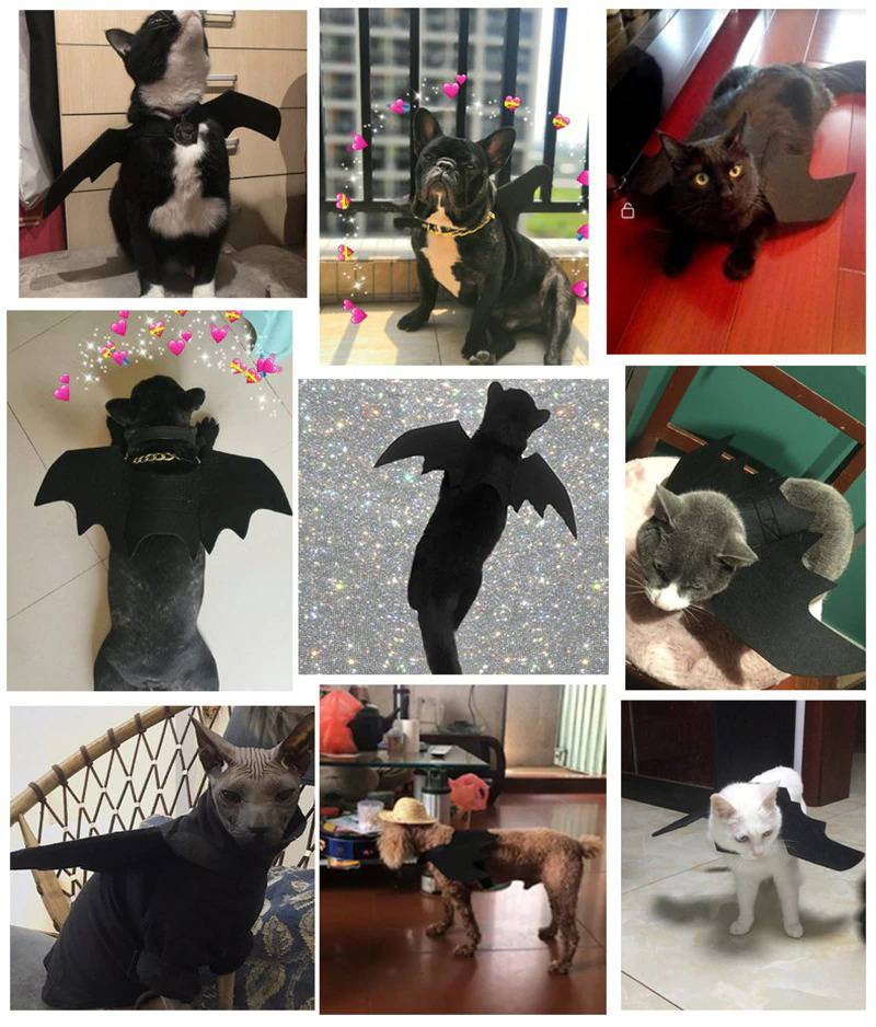 Cute Bat Wings for Pet Dog Cat Costumes Halloween Christmas Cosplay Clothing