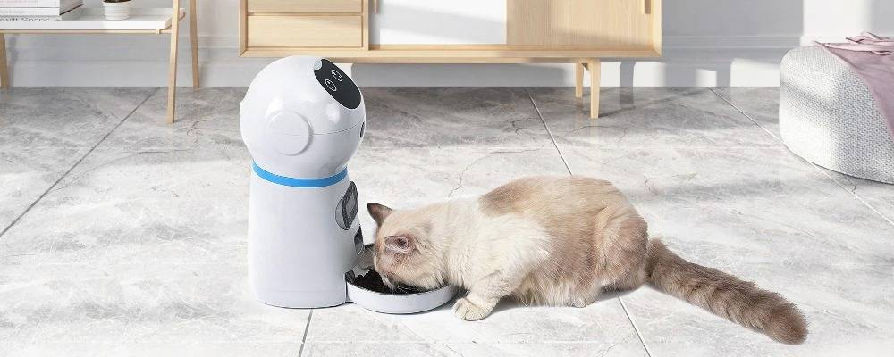 Pet Automatic Feeder With LCD Screen Voice Record Stainless Steel Food Bowl Dog Cat Timer Food Dispenser