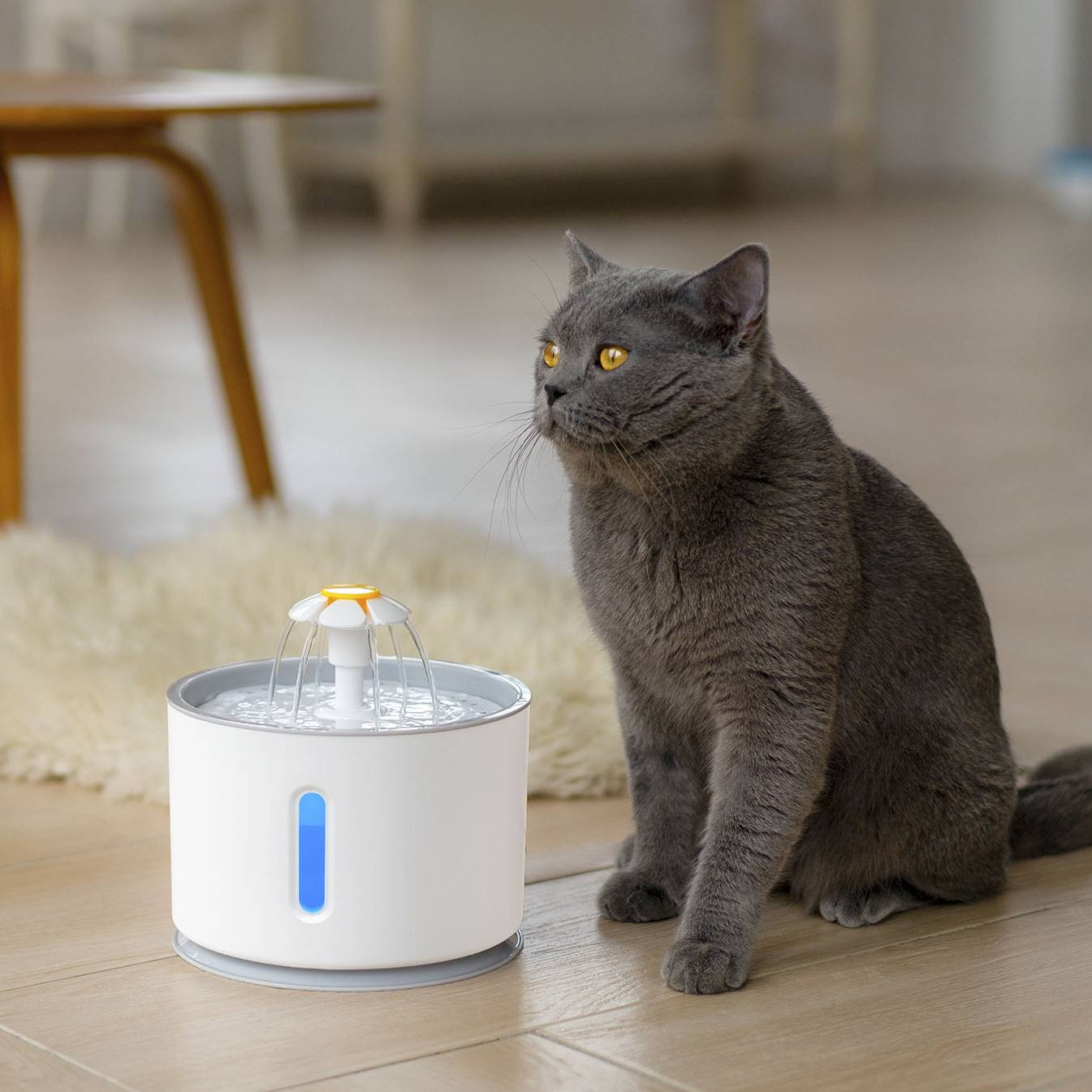 Pet Automatic Water Fountain 2.4L for Dog Cat, Pet Drinking Fountain Dispenser